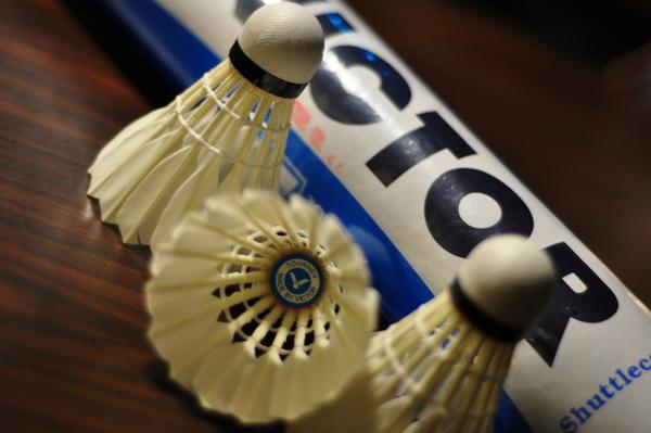勝利VICTOR羽毛球