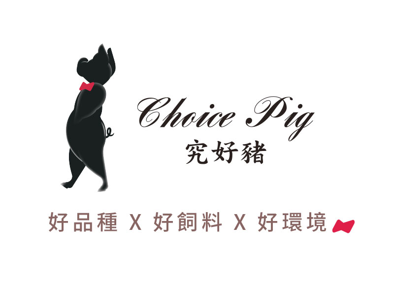 choice pig