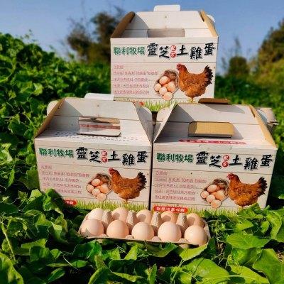 聯利牧場 靈芝土雞蛋