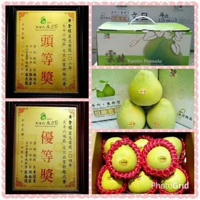 台灣優質果-標爸爸柚柚班